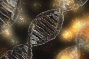 DNA Testing Orders